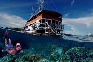 Keindahan Surga Bawah Laut Raja Ampat