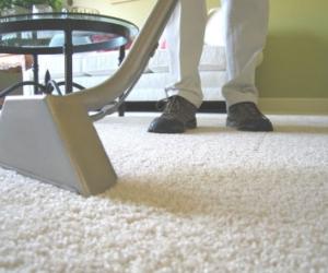 Cara Merawat Karpet Bulu dan Rekomendasi Jasa Cuci Karpet yang Bagus