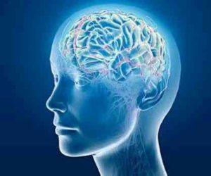 Perlunya Senam Otak Untuk Kesehatan