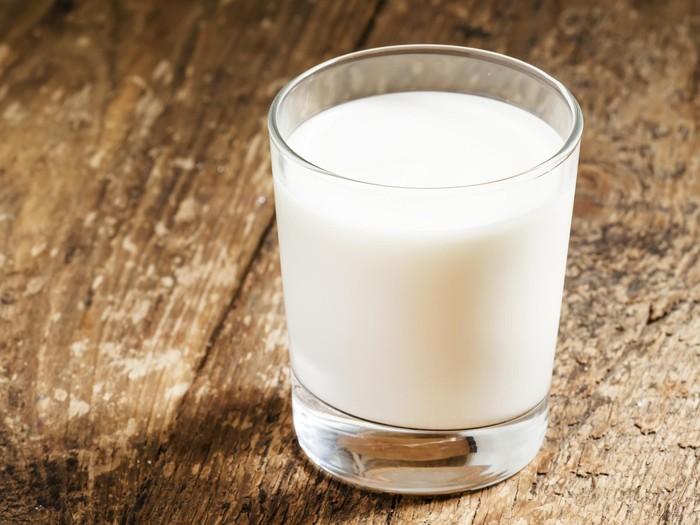 susu dancow instan untuk dewasa