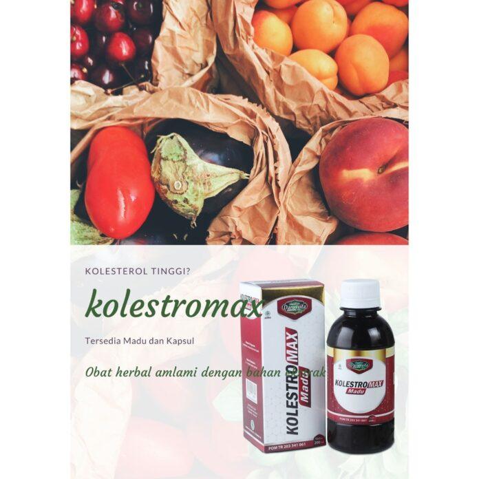 obat kolesterol ampuh